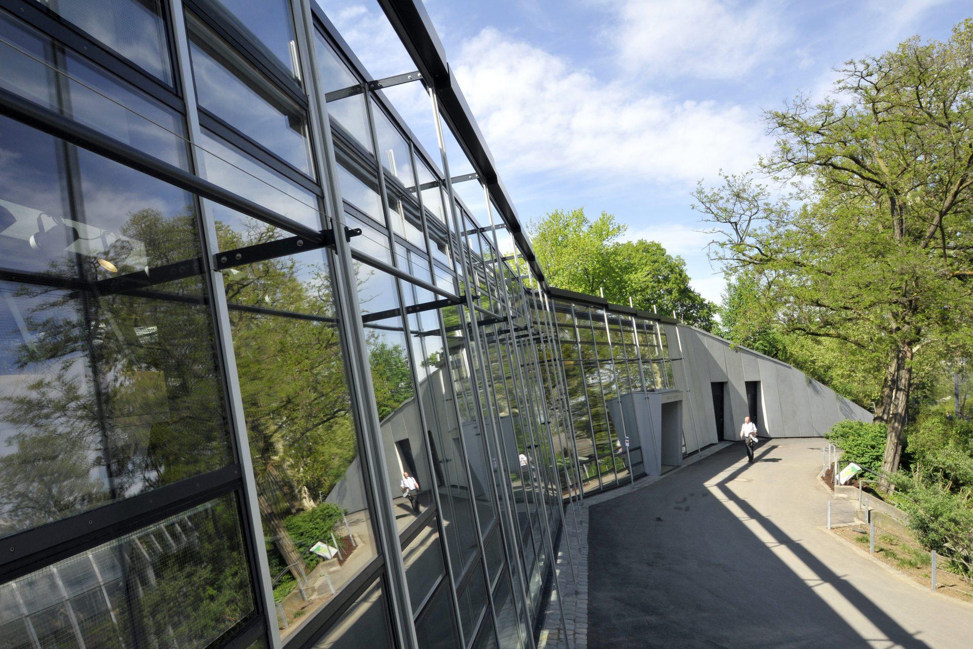 Menschenaffenhaus Wilhelma Stuttgart